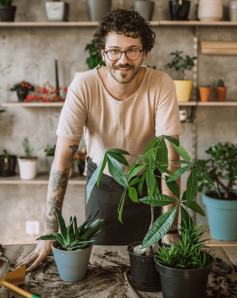 Man working in a florist standing behind three potted plants -Plusnet Business